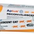 Reconvalescent Cat 60g