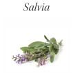 Flower Freshener