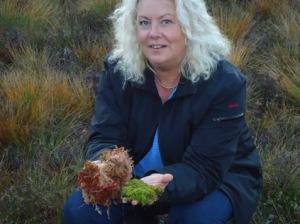 Rita Larsson visar upp växter  som finns på en torvmosse.