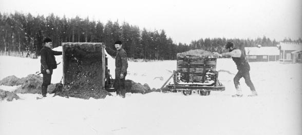 Foto: Från StigÅsbergs samling,donerad av AronChibba till BranschföreningenSvensk Torv som i och medTFCs hundraårsjubileumskänktebilderna till TFC.