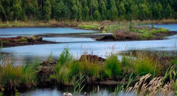 Nygårdsmossen: Våtmark skapad efter tidigare torvskörd och som därmed fått ökat naturvärde.