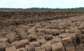 Blocktorv på tork innan stackning, Söftesmåla Naturtorv