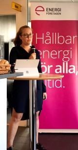 Nicole Burstein, Energiföretagen.