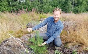 Daniel Hägglund med en planta efter två växtsäsonger i skogen. Foto: Holmen Frö och Plant