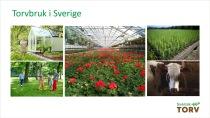 Torvbruk i Sverige