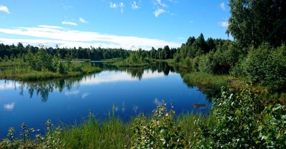Nygårdsmyren 2017 efter avslutad torvtäktverksamhet som pågick till 2010. Foto: Mats Henriksson, Neova