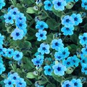 Blå blommor, gröna blad