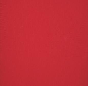 Filippa MUDDVÄV Röd -