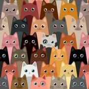 Katter på Rad