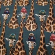 Mörkgrön botten, Giraffer
