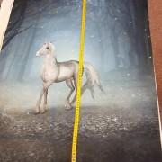 Rapport Häst i Natten
