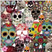 Trikå Mexikanska döskallar