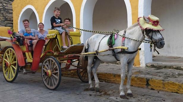 Med häst och vagn genomIzamal