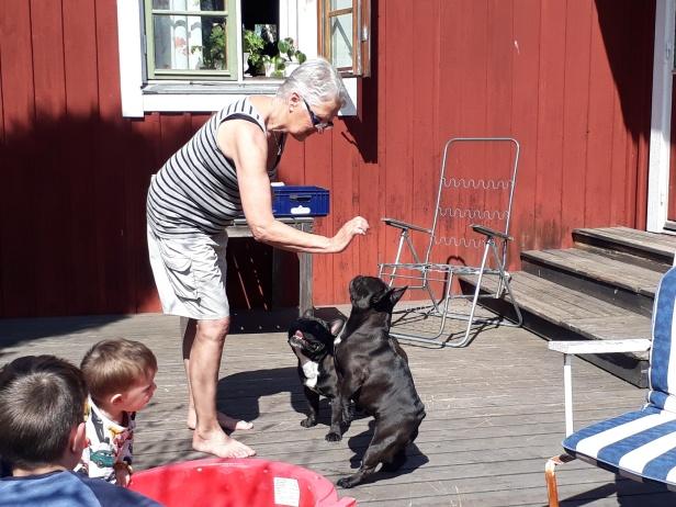 Kicki och Maya visar upp lite konster. Nappe är väldigt intresserad av hundgodiset...