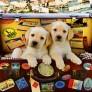 Pussel - Hundar i en Resväska