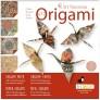 Origami Art - Tranor
