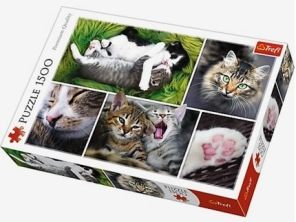 Pussel - Cats Collage -