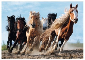 Pussel - Galopping Horses -