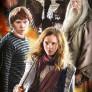 Harry Potter - 3 x 1000 bitar