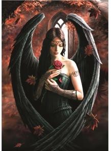 Anne Stokes - Angel Rose -