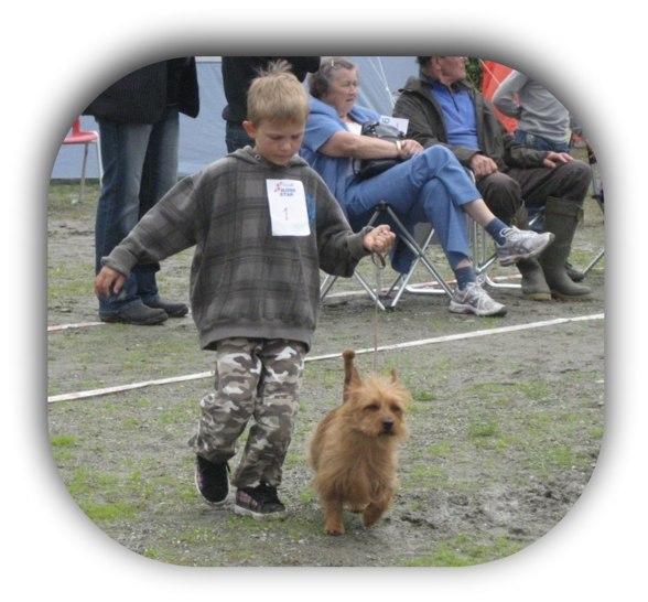 Xtra o Viggo i Trondheim, NTK. Vinner Barn med Hund, 6 st. var anmälda.