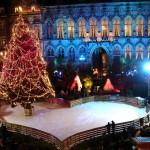 Mons Belgien julmarknad