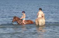 På Gangvide är det kul att vara häst