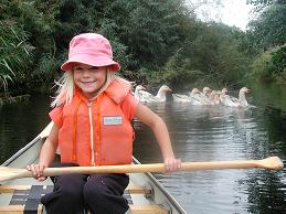 Hyr kanot och paddla i Närsån