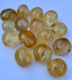 Golden healer ca 30-35 mm