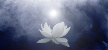 Reiki healing - stressreducerande energibehandling