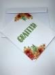 Komma ut - kort - Komma ut-kort + kuvert 5-pack