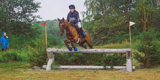 Fälttävlan Stockholm Arbottna Horse Show