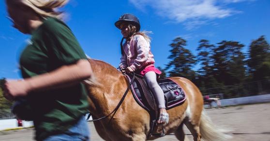 Musködagarna och ponnyridning