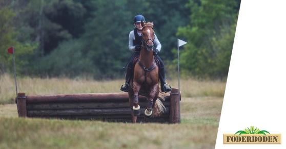 Foderboden sponsrar Arbottna Horse Show. Foto: Jonas Fajers.