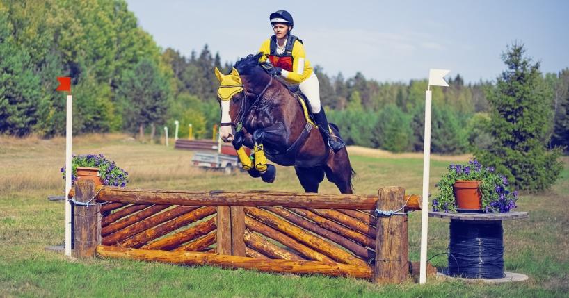 Ryttare rider över ett terränghinder under Arbottna Horse Show