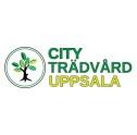 Trädfällning av professionell arborister, även trädbeskärning,  stubbfräsning och bortforsling i och runt Uppsala. Trädvård av City Trädvård AB i Uppsala