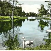 Boulognerskogen (11)