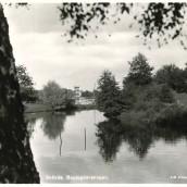 Boulognerskogen (12)
