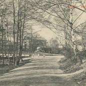 Boulognerskogen (13)