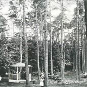 Boulognerskogen (14)