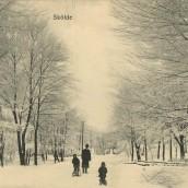 Boulognerskogen (05)
