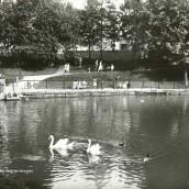 Boulognerskogen (07)