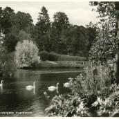 Boulognerskogen (08)