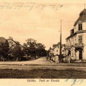 Ekedal (3)