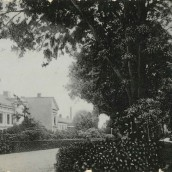 Trädgårdsgatan (2)