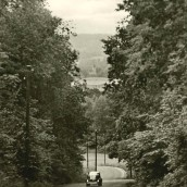 Alphyddevägen
