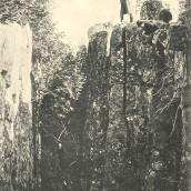 Strupen (8)