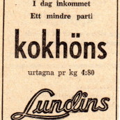 SN - Lundins