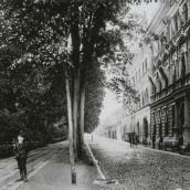 Hertig Johans gata (22)