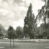 Järnvägsparken (2)